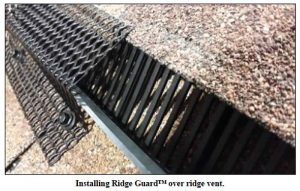 install-ridge-guard-over-ridge-vents-to-keep-out-animals
